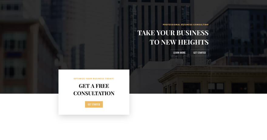 Business Consultant Website